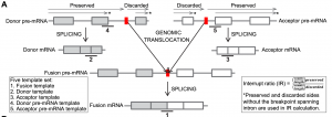 Fusion Transcript Discovery in Formalin-Fixed Paraffin-Embedded Human Breast Cancer Tissues