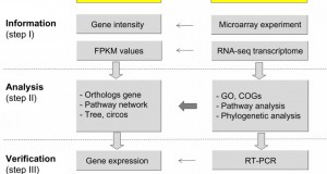 A multistep screening method to identify genes using evolutionary transcriptome of plants