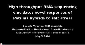 High throughput RNA sequencing elucidates novel responses of Petunia hybrida to salt stress