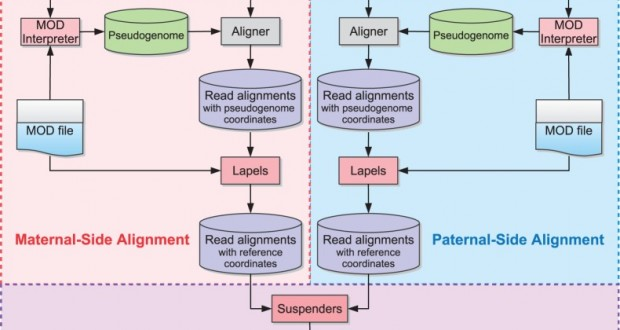 A novel multi-alignment pipeline for high-throughput sequencing data