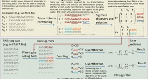RNA-Skim – a rapid method for RNA-Seq quantification at transcript level