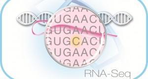 Webinar – Developing new insights into gene expression using RNA-Seq