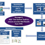 Upcoming Webinar – Next-Generation Sequencing Lessons in Translational Diagnostics
