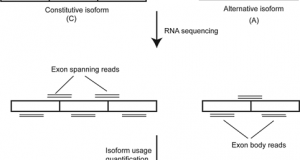 Incorporating alternative splicing and mRNA editing into the genetic analysis of complex traits