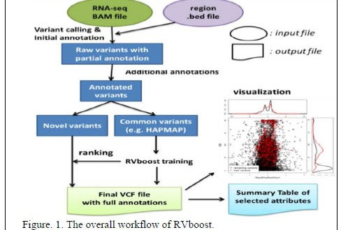 RVboost: RNA-Seq variants prioritization using a boosting method
