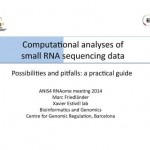 Computational analyses of small RNA sequencing data: possibilities and pitfalls
