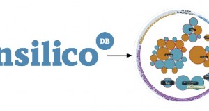 RNA-Seq with iReport and InSilico DB