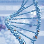Scientists discover how disruptive genetic RNA is made