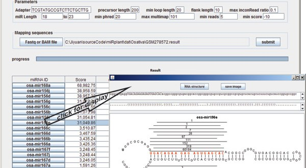 miRPlant – an integrated tool for identification of plant miRNA from RNA sequencing data