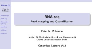RNA-Seq Read Mapping and Quantification