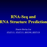 RNA-Seq and RNA Structure Prediction
