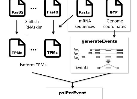 SUPPA – a super-fast pipeline for alternative splicing analysis from RNA-Seq