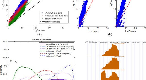 BADGE – A novel Bayesian model for accurate abundance quantification and differential analysis of RNA-Seq data