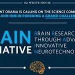 Harvard researchers among the first to receive grant funding through BRAIN Initiative