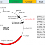 Open-access synthetic spike-in mRNA-seq data for cancer gene fusions