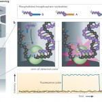 PacBio Sequencing for Human Applications to be Featured at ASHG Annual Meeting Next Week