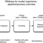 Workshop Materials – mRNA-Seq at Michigan State University