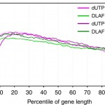 DLAF – a novel method for strand-specific sequencing of RNA (ssRNA-seq)
