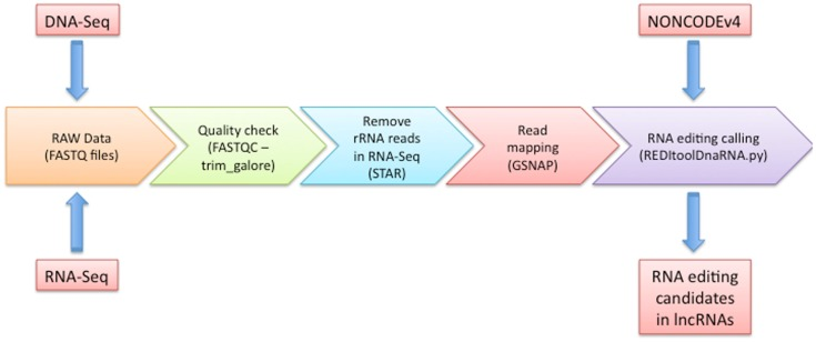 REDItools – Uncovering RNA Editing Sites in Long Non-Coding RNAs