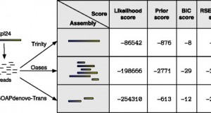 RSEM-EVAL – for evaluating assemblies when the ground truth is unknown