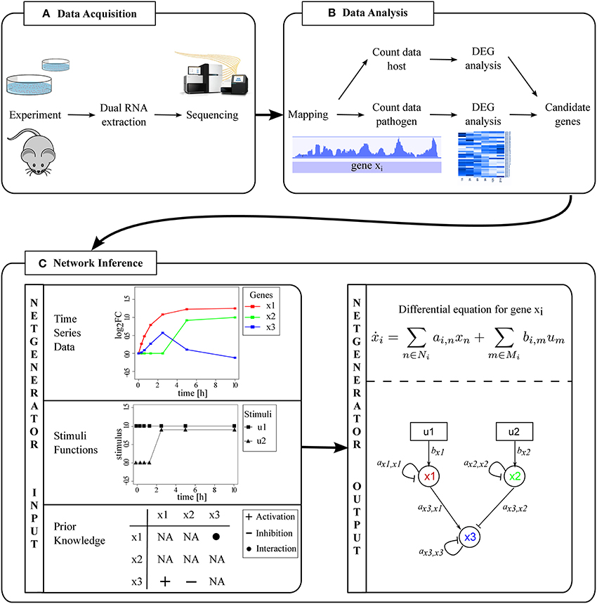 dual rna-seq of pathogen and host pdf