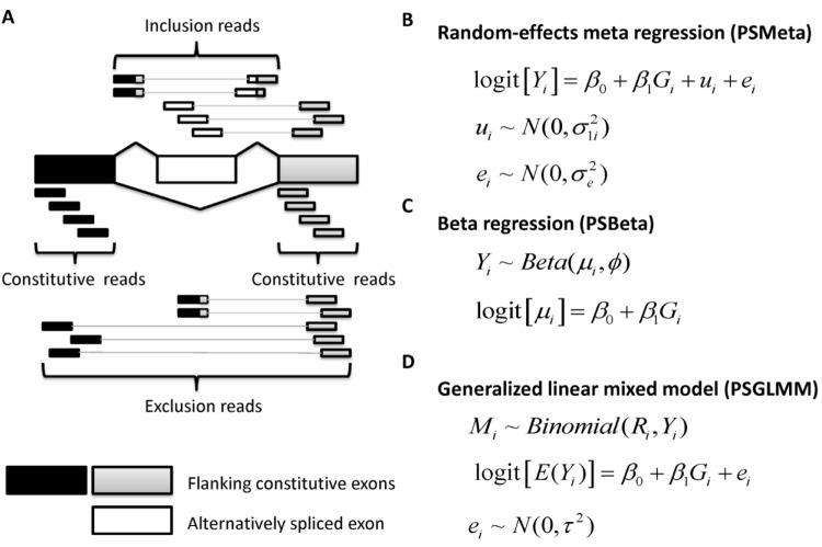 Mapping Splicing Quantitative Trait Loci in RNA-Seq | RNA