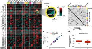 META – modular, early-tagged amplification RNA profiling