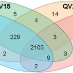 The impact of quality filter for RNA-Seq