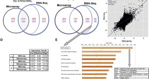 Comparison of atopic dermatitis transcriptome profiling by microarray and RNA-Seq