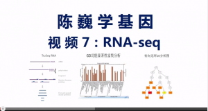 RNA-Seq Data Analysis – Video in Chinese
