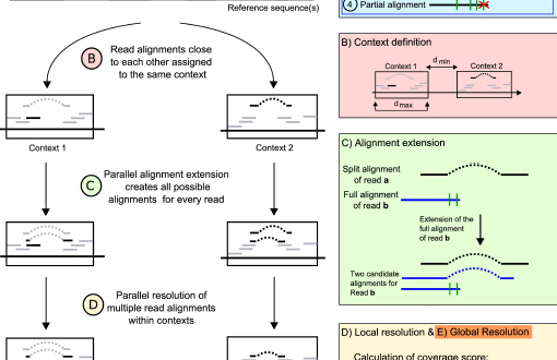 ContextMap 2 – fast and accurate context-based RNA-Seq mapping