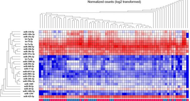omiRas – A MicroRNA-Seq Data Analysis Pipeline
