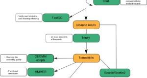 TRUFA – A User-Friendly Web Server for de novo RNA-seq Analysis Using Cluster Computing