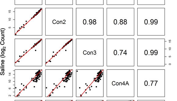 Evaluating the Stability of RNA-Seq Transcriptome Profiles in Whole Blood Over Time