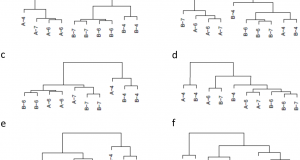 Assessing Dissimilarity Measures for Sample-Based Hierarchical Clustering of RNA Sequencing Data Using Plasmode Datasets