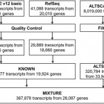 Researchers estimate number of human transcripts with protein-coding potential is greater than 200,000