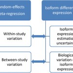 MetaDiff – differential isoform expression analysis using random-effects meta-regression