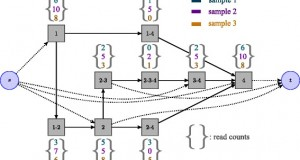 Flipflop – convex formulation to jointly detect and quantify isoforms from RNA-Seq data
