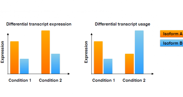 Differential transcript usage from RNA-seq data – isoform pre-filtering improves performance of count-based methods
