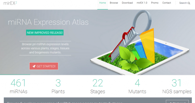 mirEX 2.0 – an integrated environment for expression profiling of plant microRNAs