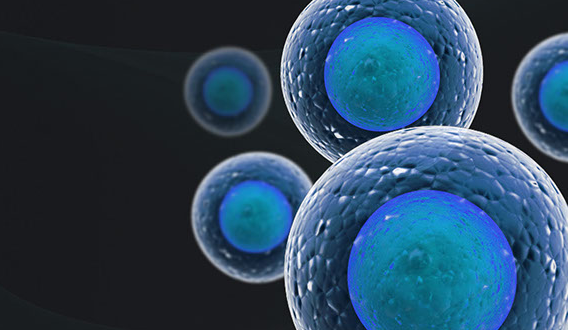 Cellular Research Launches Grant Program for a Free Single Cell Gene Expression Project