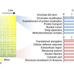 How good are those RNA-seq data?