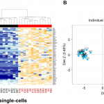 Single-cell RNA sequencing identifies tumor subpopulations