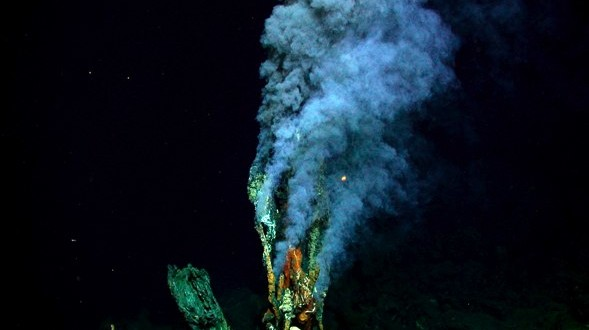 Scientists provide first insight by RNA sequencing deep-sea hydrothermal vent animals