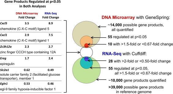 Mapping the cell response to fluid flow using RNA-Seq