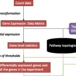 ToPASeq – an R package for topology-based pathway analysis of microarray and RNA-Seq data