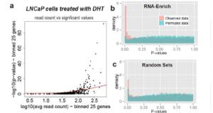 RNA-Enrich –  gene set enrichment (GSE) testing for RNA-Seq data