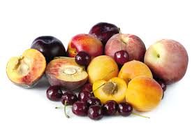 New de novo transcriptome assemblies for several stone fruits published