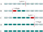 BinPacker – Packing-Based De Novo Transcriptome Assembly from RNA-Seq Data
