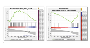 New to RNA-Seq Bioinformatics? Try GeneGazer